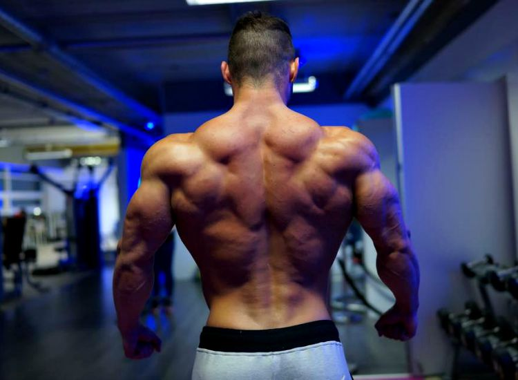 Rise of Stanozolol